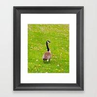 Goose In A Field Of Flow… Framed Art Print
