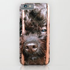 Where's My Master iPhone 6 Slim Case