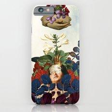 Boaz And Jachin  iPhone 6 Slim Case