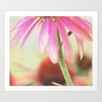 Flower Shower Art Print
