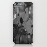 iPhone & iPod Case featuring B&W Dogwood by Alyssa