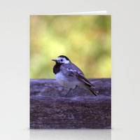 White Wagtail 4123 Stationery Cards