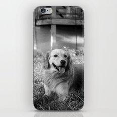 Buddy iPhone & iPod Skin
