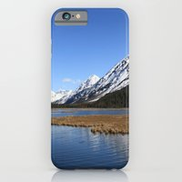 Tern Lake iPhone 6 Slim Case