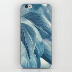 Blue 133 iPhone & iPod Skin