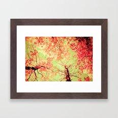 Color Drama II Framed Art Print