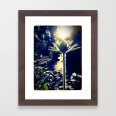 Backlight Framed Art Print