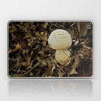 Fall Blooms Laptop & iPad Skin