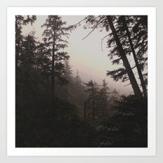 Oregon Coastal Forest Art Print