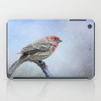 Finch In The Snow iPad Case