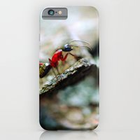 Ant Insect Photography, Nature, Macro, Home Decor iPhone 6 Slim Case
