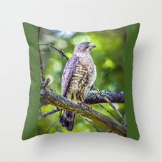 Broad wing Hawk Throw Pillow