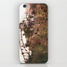 Queens iPhone & iPod Skin