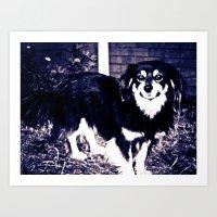 STREET DOGS Art Print
