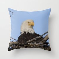 Eagle's Nest Throw Pillow