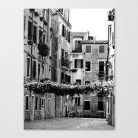 Vines Across Venetian St… Canvas Print
