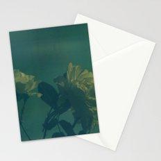 Blue Roses Polaroid Stationery Cards