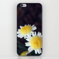 Sunny Flowers iPhone & iPod Skin