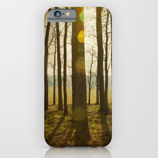 Throw Pillows Vs Lens Flare : Afternoon Sunlight with Lens Flare iPhone & iPod Case by Tricia McKellar Society6
