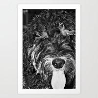 Scout... Art Print