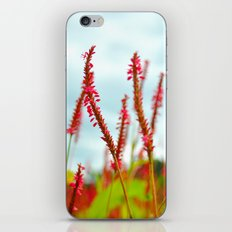 Vibrant Pink Wild Flowers iPhone & iPod Skin
