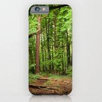 Glade of my Dreams  iPhone 6 Slim Case