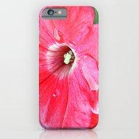 Resting iPhone 6 Slim Case