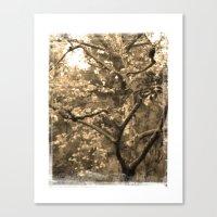 Tree of Hearts - Sepia Canvas Print