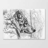 Wolf in woods G082 Canvas Print