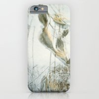 iPhone & iPod Case featuring Milk Weed by erinreidphoto