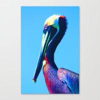 Pop Art Pelican Canvas Print