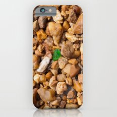 Rocks and Green Glass iPhone 6 Slim Case