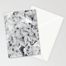 Prodigy Stationery Cards