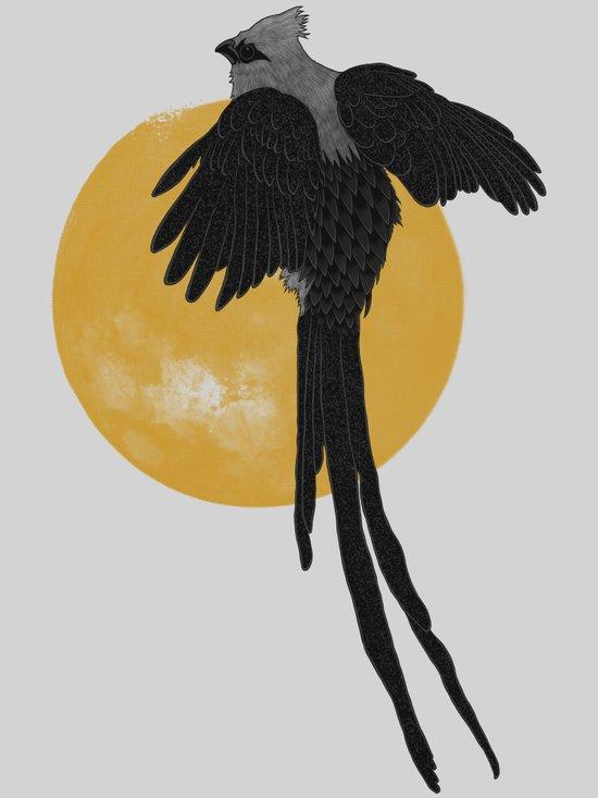 Mousebird Art Print