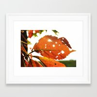 Shine A Light Framed Art Print