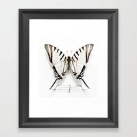 BUTTERFLY   FIG. 01 Framed Art Print