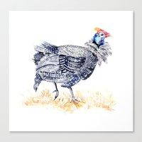Guineafowl Canvas Print