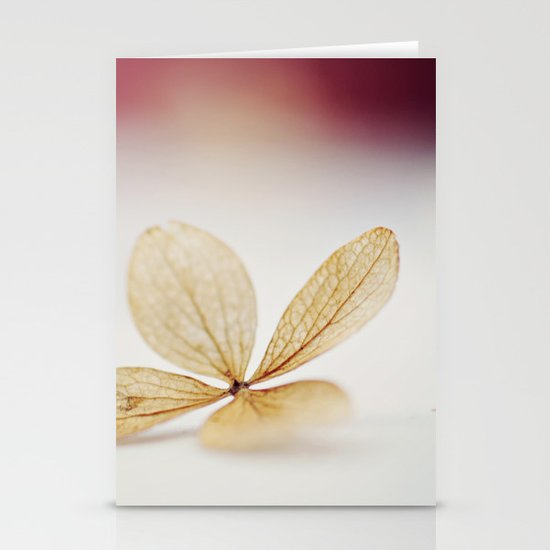 Sheer Stationery Card