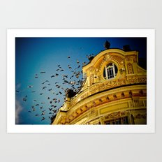 Birds on a Building, Sibiu, Romania Art Print