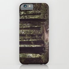 Redwood Forest iPhone 6s Slim Case