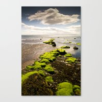 Away To The Sea Canvas Print