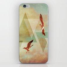   G U L L S   iPhone & iPod Skin