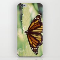Monarch iPhone & iPod Skin