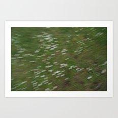 dizzy daisy Art Print