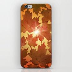 Autumn Leaves Fall Season iPhone & iPod Skin