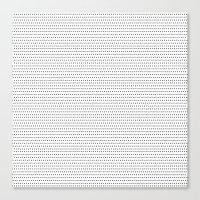 ExOh Canvas Print