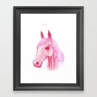 Year Of The Horse Framed Art Print