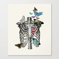 Anatomy 101 - The Thorax Canvas Print