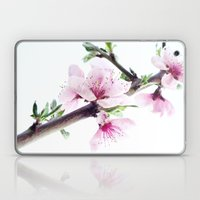 Spring 1 Laptop & iPad Skin