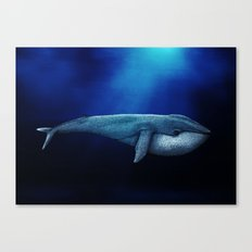 The whale. Canvas Print